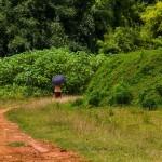 http://www.federicavairani.com/files/gimgs/th-60_Laos_2014_7832.jpg