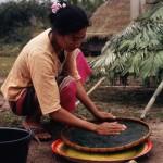 http://www.federicavairani.com/files/gimgs/th-60_Laos_2_10-Donna-che-lavora-le-alghe---Mouang-La-291205.jpg