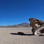 http://www.federicavairani.com/files/gimgs/th-62_bolivia_3321---210809-Deserto-de-Sioli---Arbol-de-piedra.jpg